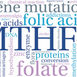 Homocysteine: the genetic factors influencing plasma concentration